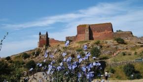 Das Interesse an Bornholm ist steigend. Foto: Destination Bornholm.